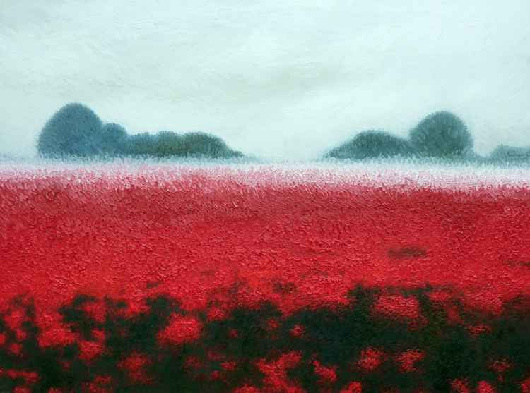 Oxfordshire Poppy Mist -