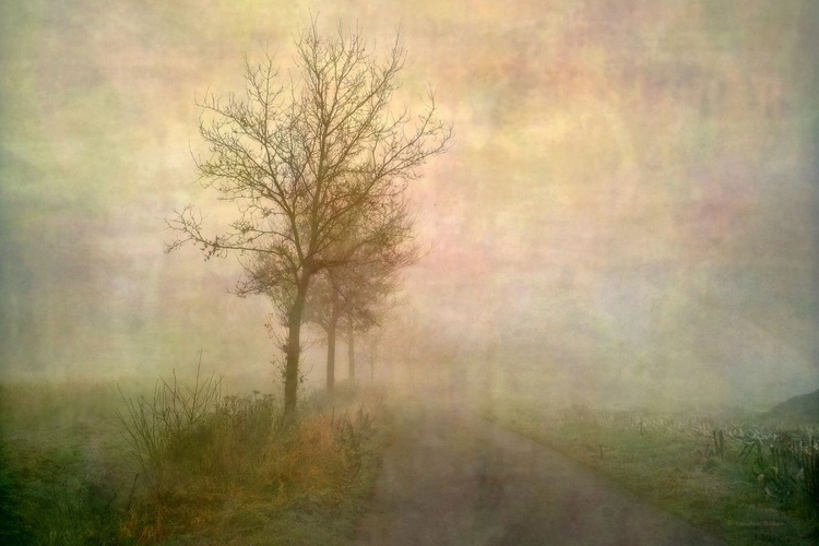 Blurred  - Canvas 75 x 50 cm - Image 0
