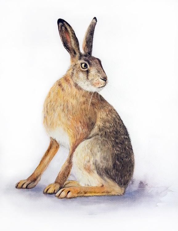 Brown Bunny#2 - Image 0