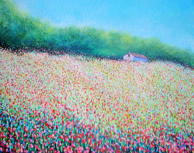 Poppies in Pembrokeshire (A Quiet Barn) - Image 0