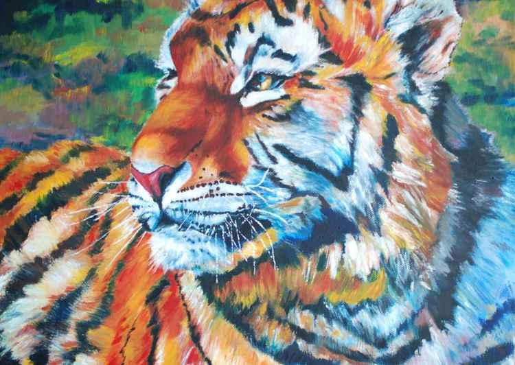 Tiger Mama -