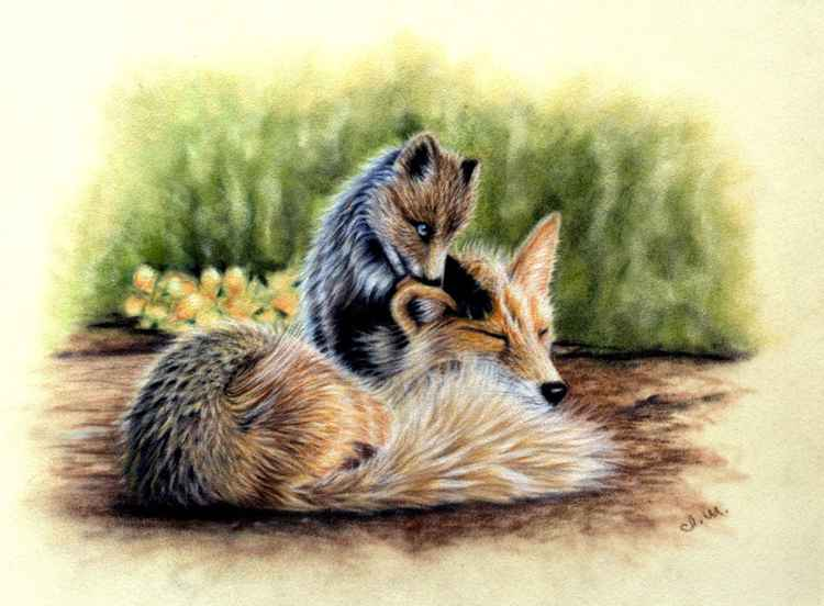 Fox Family Original pastel drawing -