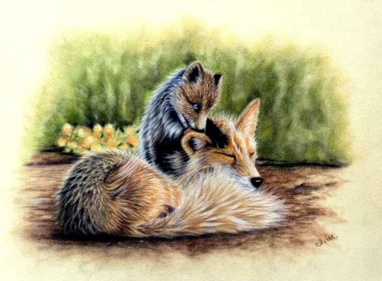 Fox Family Original pastel drawing