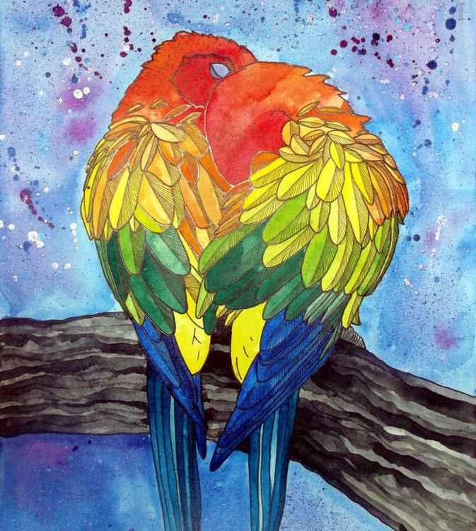 Parrot Companion -