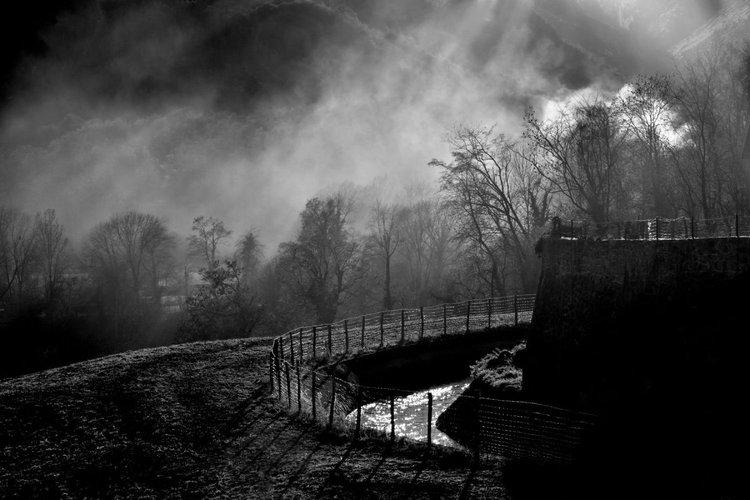 Nature Et Lumiere ombre et lumierephilippe berthier | artfinder