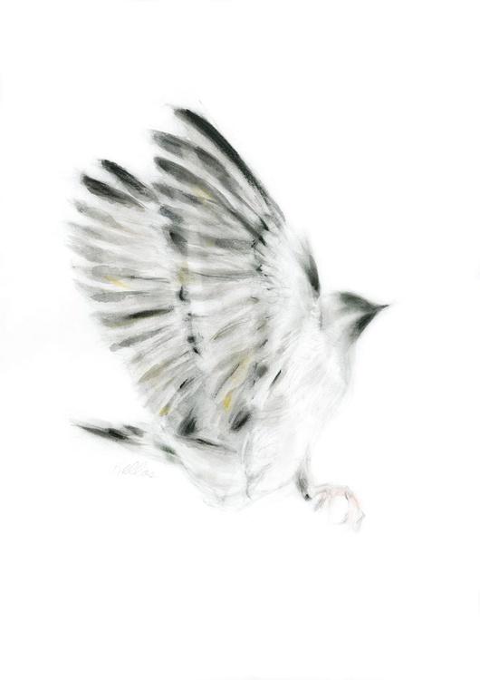Wings - Image 0