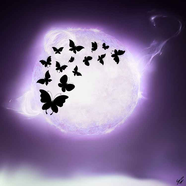 Butterflies and Sky -
