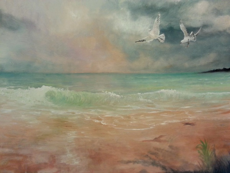 Emerald waters and seagulls - Image 0