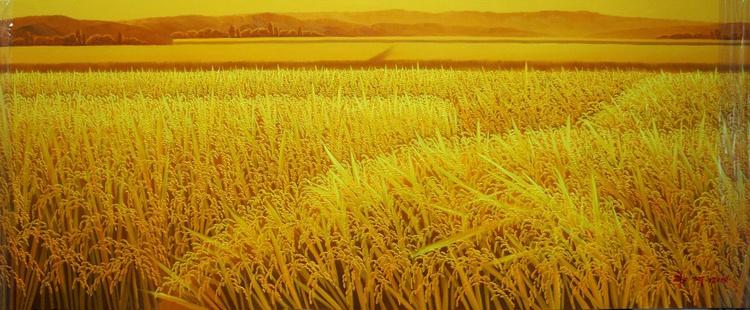 Spring Rice Crops in India Mumbai - Image 0
