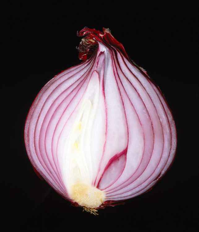 Red Onion -