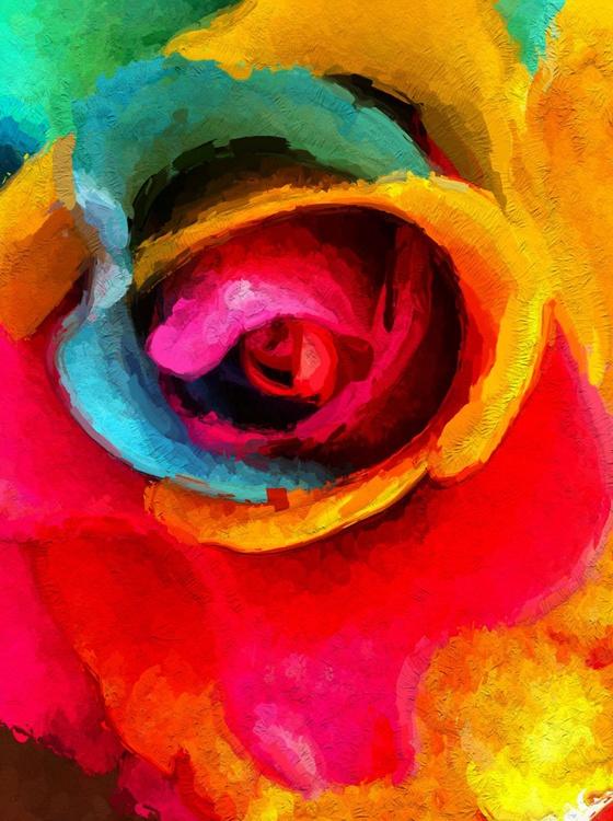 Colourific Rose 4 - Image 0
