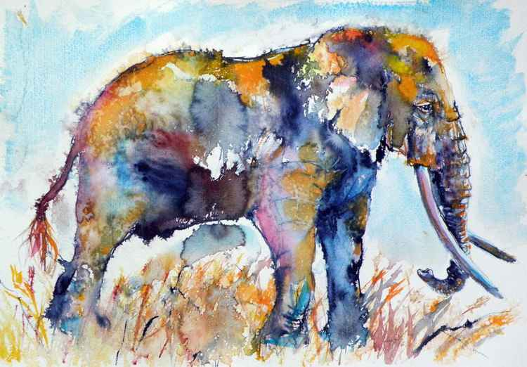 Colorful elephant II -