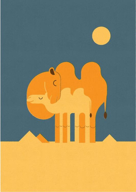 Camels - Image 0