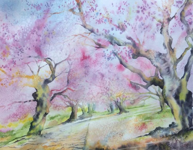 Flamboyants Sakuras (Flamboyance of Sakuras) - Image 0