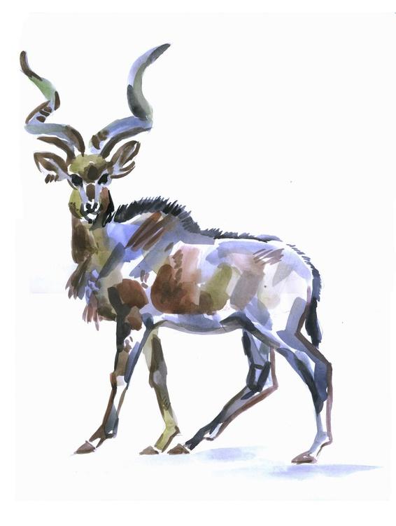 roe deer - Image 0