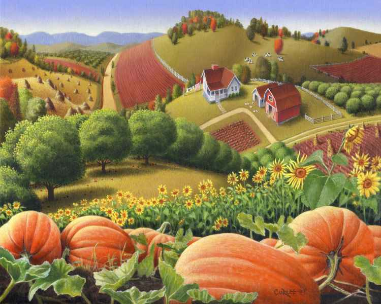 Appalachian Pumpkin Patch -