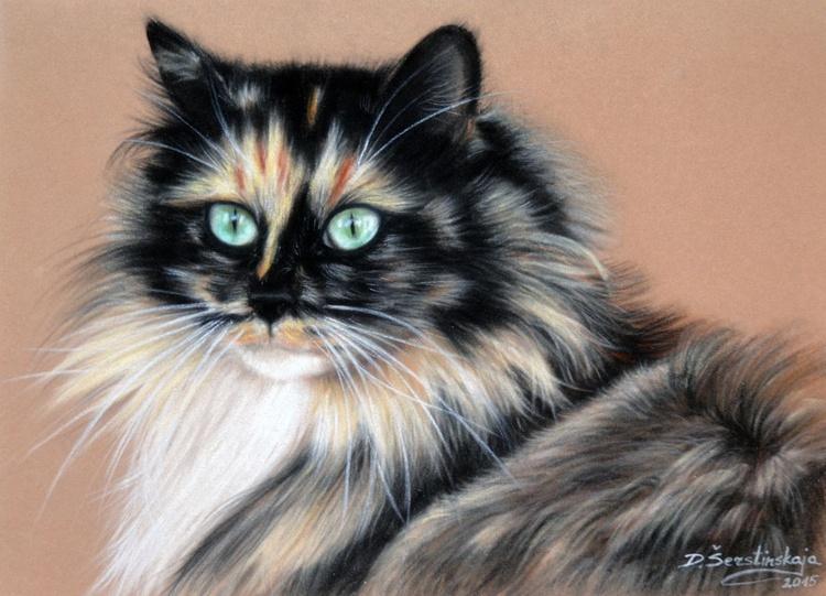 Cat Luna - Image 0
