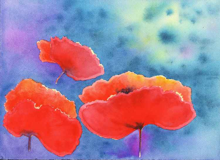 Spring Poppies -