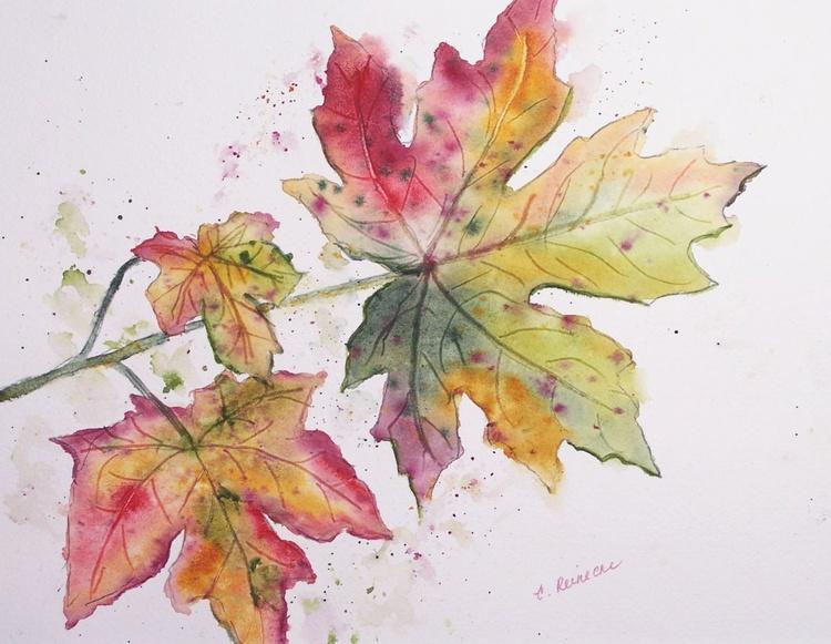 Maple Colors - Image 0