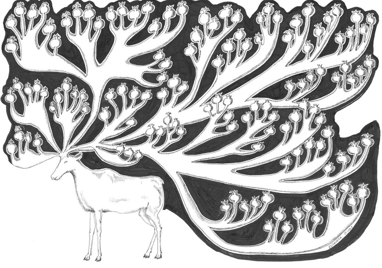 DEER WITH POMEGRANATES - Image 0