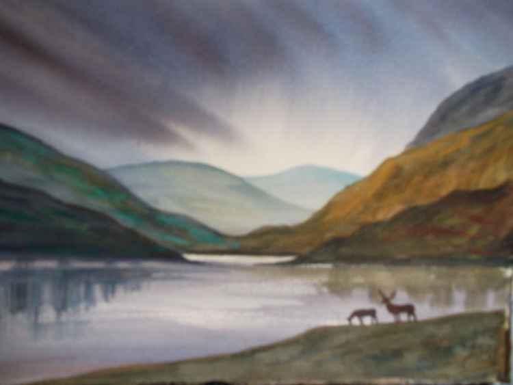 Deer by Highland Loch, Scottish