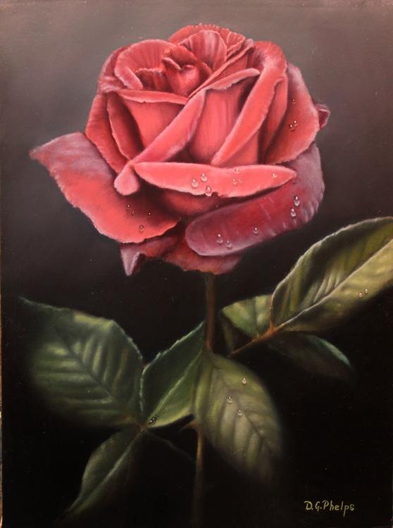 Red Velvet Rose - Image 0