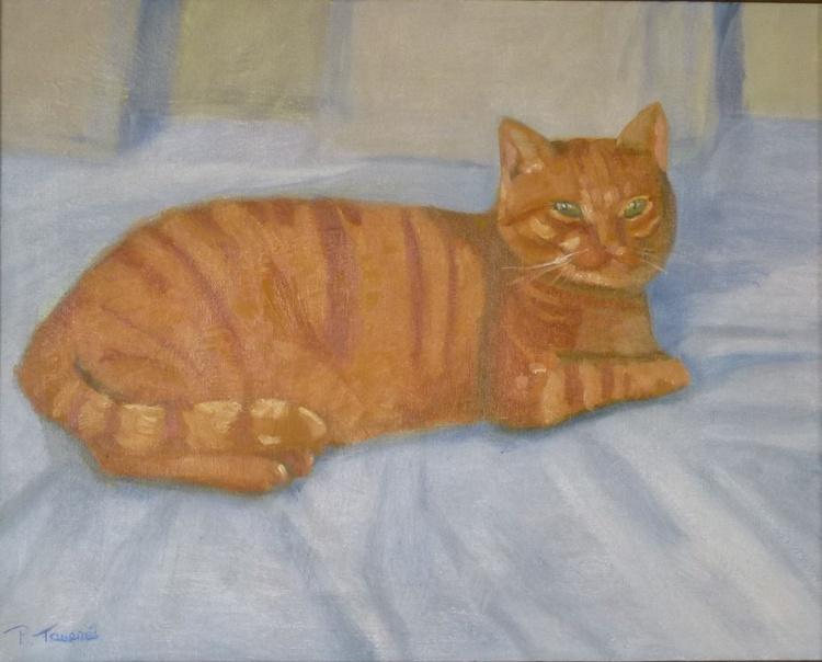 Roméo the cat - Roméo le chat - Image 0