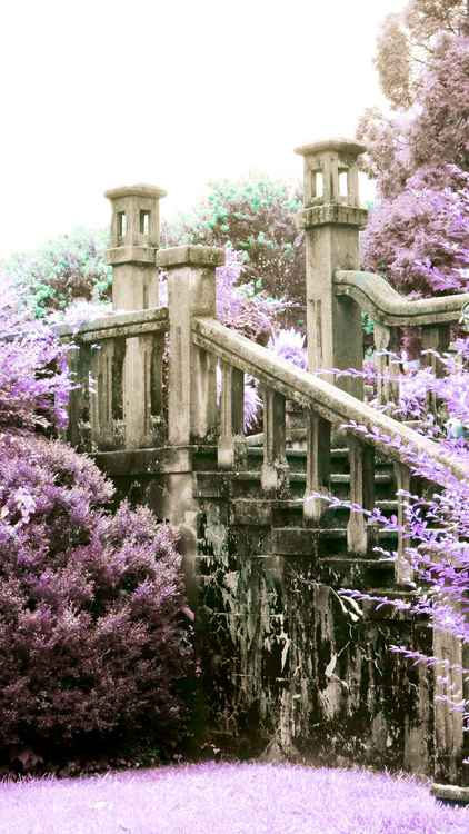 """Lavender Staircase""  (from the Bleak House Series) -"