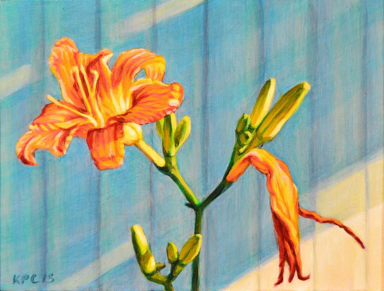 Day Lily Cycle - Image 0