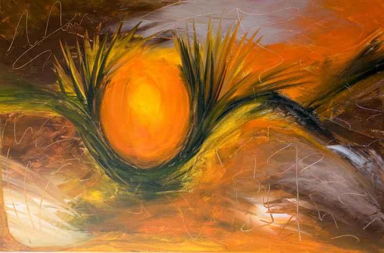 Sun Nest