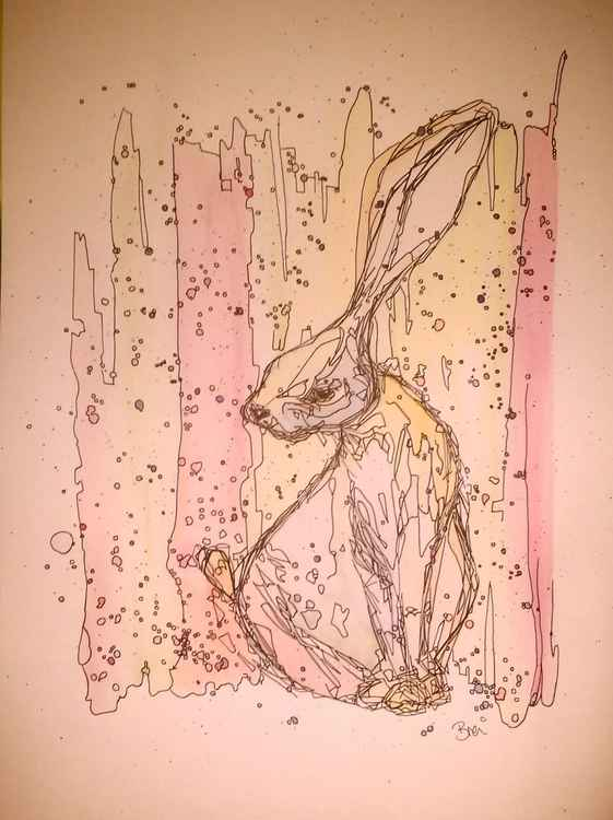 Pen Hare -