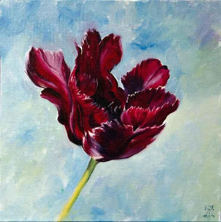 The tulip -