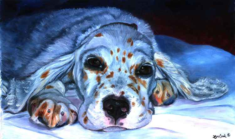 English Setter Puppy Dog -