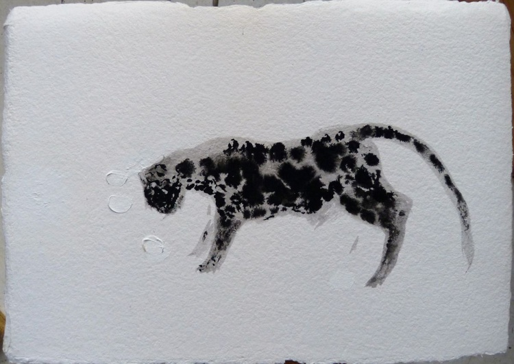 The spotty cat, ink drawing oh heavy art paper 30x44 cm - Image 0