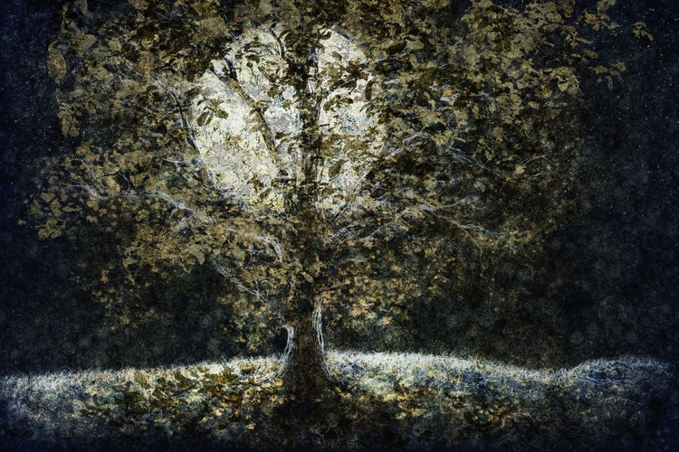 Full Moon Fall (Ltd Edition of only 20 Fine Art Giclee Prints from original artwork) - Image 0