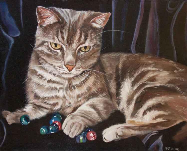 Jeune chat aux billes -