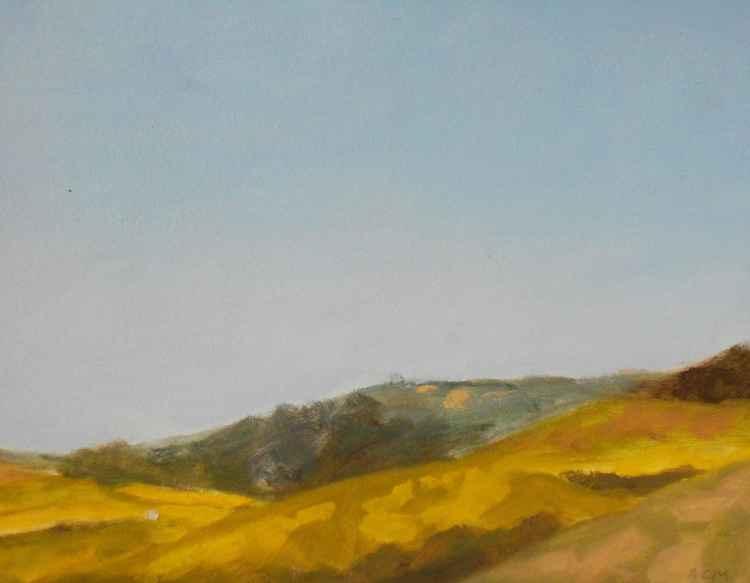 Montara Hills in Spring -