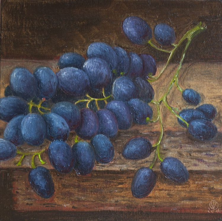 Blue Grapes (15x15cm) original oil painting little still life realistic vintage style small gift kitchen decor - Image 0