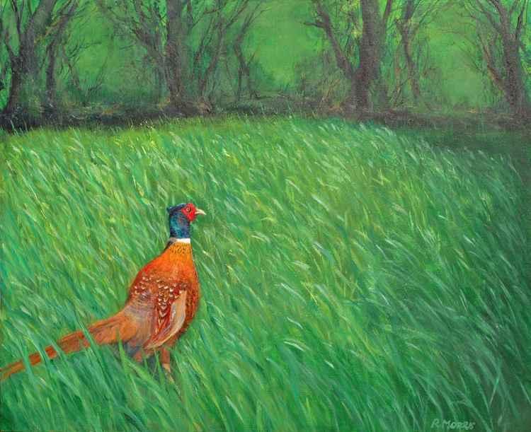 Milborne Port Pheasant -