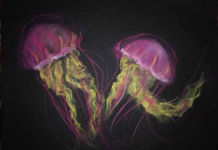 Meduze -