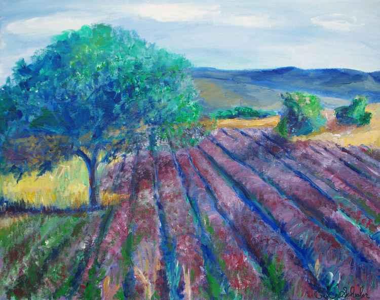 Provence  Landscape -