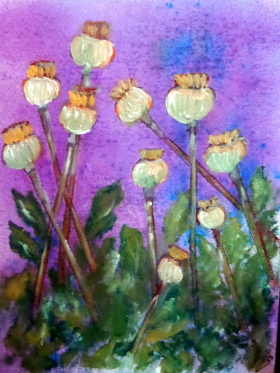 """poppy seeds"" - Image 0"