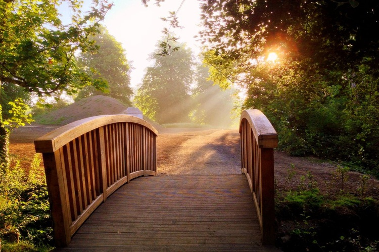 Sunrise beyond the Bridge - Image 0