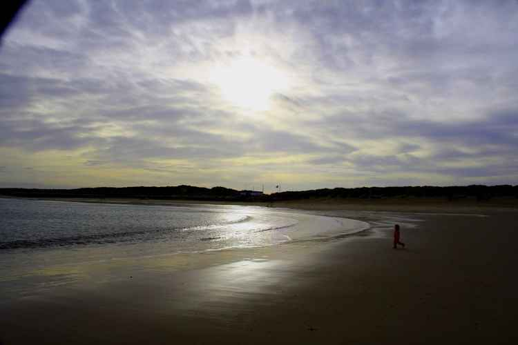 BEACH IN EVENING SUNLIGHT.