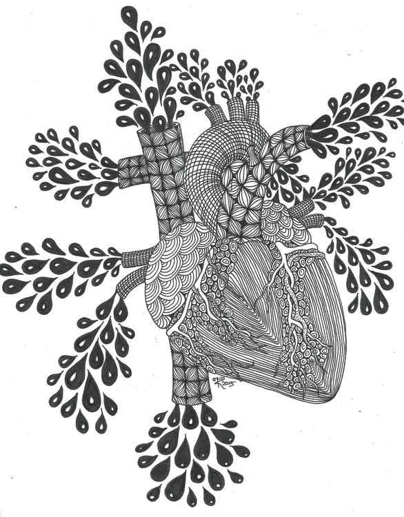 Human Heart -