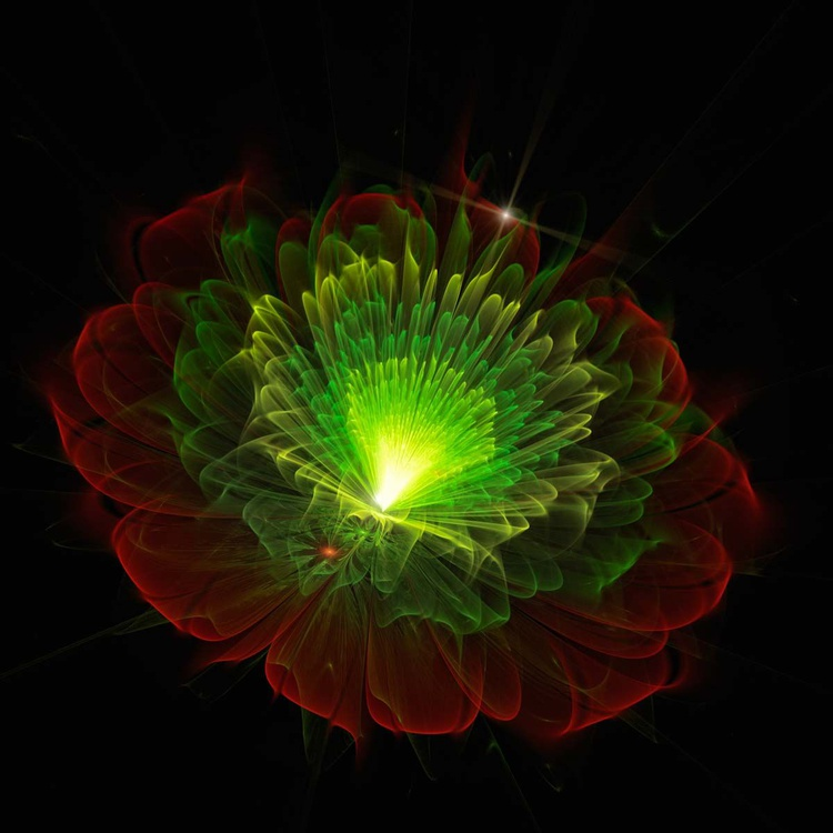 The lighting flower - Image 0