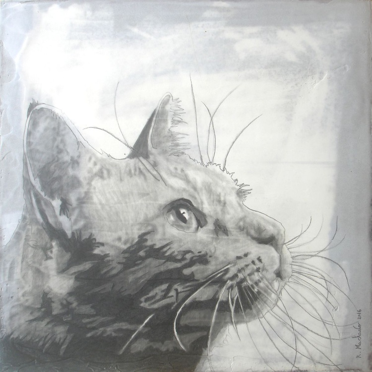 cat art - Image 0