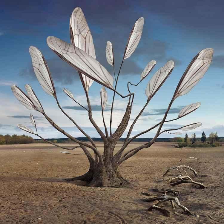 Treewings -