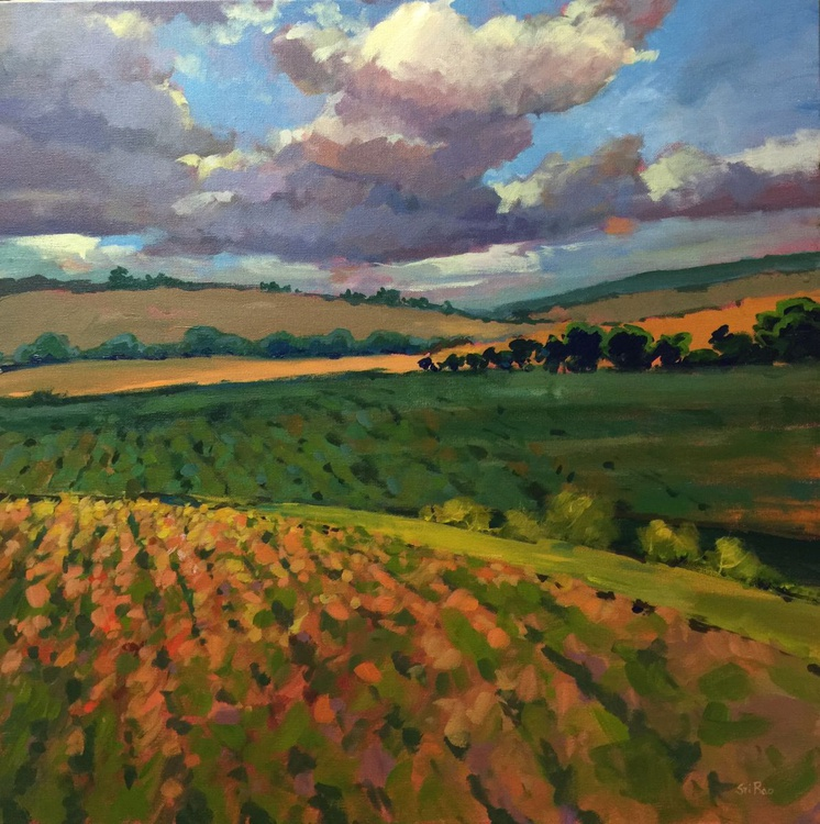 Clouds over fields - Image 0
