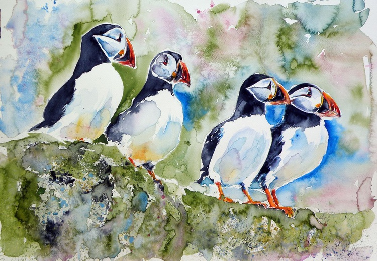 Puffins on stone - Image 0